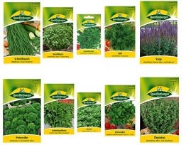 Kräutersamen Sortiment - 10 Sorten -
