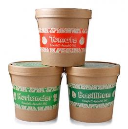Spicy Garden - Anzucht-Set - Kräuter - mit Koriander, Basilikum & Tomate - Pflanzen-Kit - Einstieg in die Planzen-Zucht - ideal zum Verschenken -